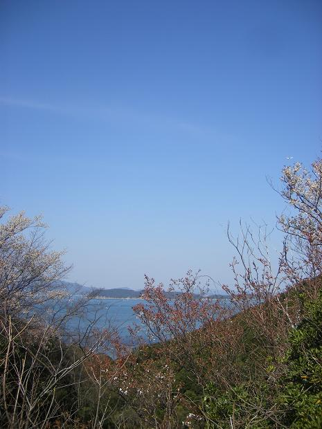 20100327c.JPG